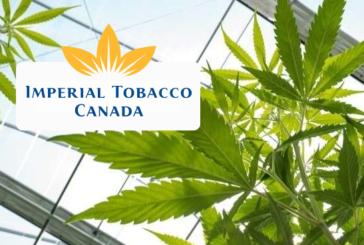 CANADA : Impérial Tobacco demande une équité entre tabac et cannabis.