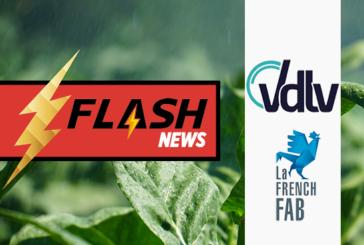 TECH: VDLV מצטרף לנושא הסטנדרטי של התעשייה הצרפתית, הפאב הצרפתי!