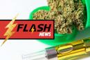 STATI UNITI: Oregon prevede di vietare l'uso degli aromi nello svapo di cannabis