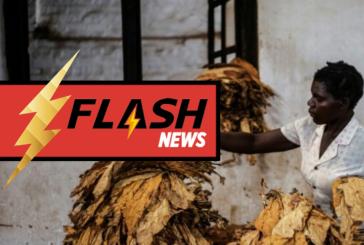 CAMERUN: Numerose critiche contro le interferenze straniere sulla tracciabilità dei prodotti del tabacco